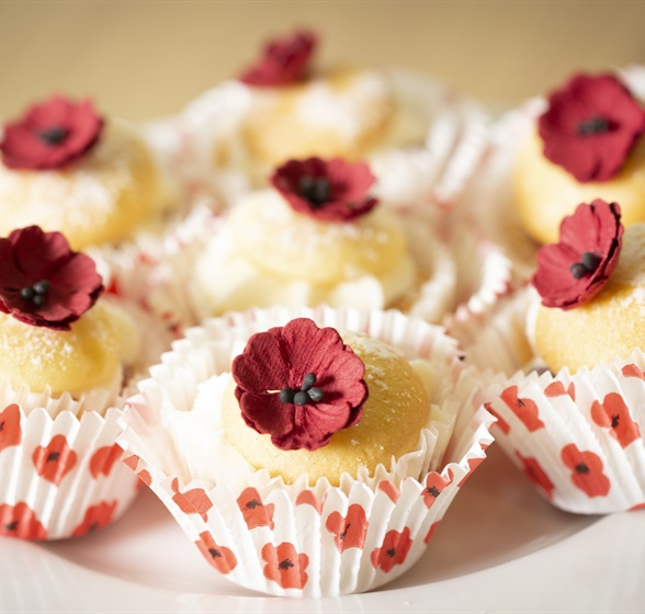Poppy_Appeal_Fundraisers-87